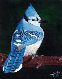 Blue jay painting bird art print  by AnimalArtbyKayla on Etsy, $25.00