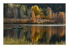Ruska järvellä. Colourful landscape.