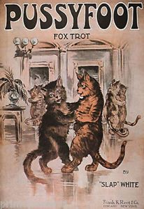 Vintage Sheet Music- 'Pussyfoot Fox Trot'