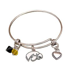 Iowa Hawkeyes Wire Memory Bracelet with Charms Sports Team Accessories http://www.amazon.com/dp/B0156YUNGK/ref=cm_sw_r_pi_dp_sBl3wb066TMN9