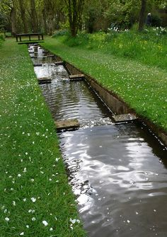 Rill at Coton Manor, Northamptonshire.