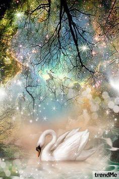 The Magic Swan from Marisol Espaillat - trendme.net