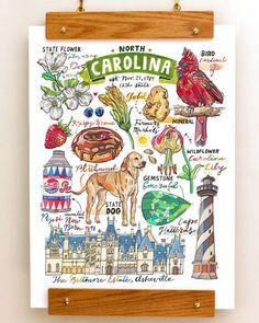 Caroline du Nord état symboles Illustration état signees