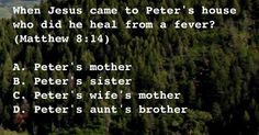 When Jesus came to Peter's house who did he heal from a fever?