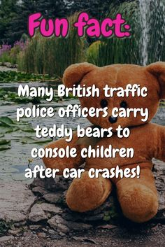 Fun fact: Many British traffic police officers carry teddy bears to console children after car crashes!
