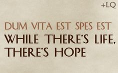 dum vita est spes est  While there's life, there's hope #latin #quotes