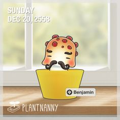Say hello to my plant! It has absorbed 414 oz of water. Get yourself a plant at http://fourdesire.com/outer_link?url=http://itunes.apple.com/app/id590216134&l=en_TH&m=56763E01