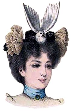 In 1886, an ornithologist from the American Museum of Natural History, Frank Chapman, wrote a letter to the editors of Forest and Stream: A Journal of Outdoor Life, Travel, Nature Study, Shooting. Chapman brought to their attention a list of native birds seen on hats worn by ladies in the streets of New York. (see link for list of birds) victoriana.org