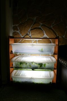 Hygrolon grow boxes | Flickr - Photo Sharing!
