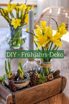 DIY - spring decoration - are you looking for the transition between winter and spring . - DIY – Spring decoration – Are you looking for a nice one for the transition between winter and - Summer Decoration, Spring Decorations, Diy Spring, Fleurs Diy, Winter Garden, Diy Videos, Christmas Diy, Diy Home Decor, Simple