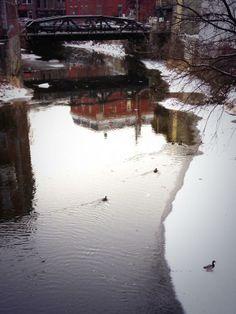 These #steadfast mallards explore the half-frozen river. #rethinkchurch #rethinkchristmas @Rethink Church pic.twitter.com/HO1tWgssy5