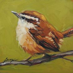 https://www.etsy.com/listing/191856671/carolina-wren-print-6x6-fine-art-print?ref=shop_home_feat_2