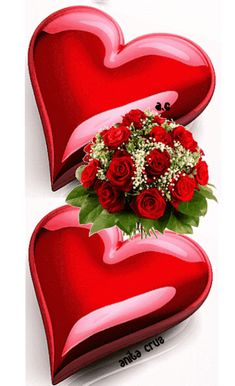 Beautiful Love Images, Good Night Love Images, Love Heart Images, Love Heart Gif, Love You Gif, Cute Love Gif, Love Wallpapers Romantic, Beautiful Flowers Wallpapers, Beautiful Rose Flowers