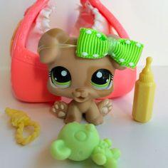 Littlest Pet Shop RARE Mocha Puppy #1353 w/Green Eyes, Carrier & Accessories #Hasbro