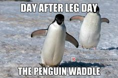 #workout #fitness #humor