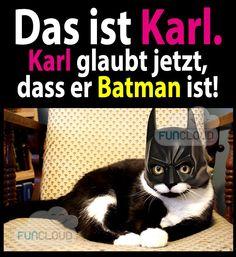 Das ist Karl. Karl glaubt jetzt dass er Batman ist.