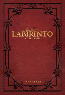 Labirinto - livro da DarkSide Books