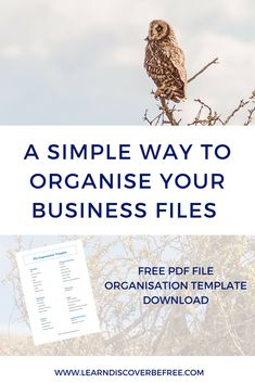 Are your business files a mess? Adding simple to use systems to your business can make such a difference to how smoothly it runs.  If you'd like to get a better system in place to organise all of your business files then come and collect your free file organisation template. It's the perfect place to start getting your files in order.