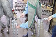 Tail Tuxedos, how to put in a braided tail bag