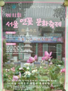 연꽃 문화축제