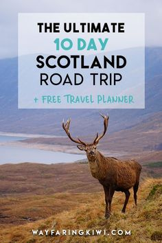 The Ultimate 10 Day Scotland Itinerary + Free Printable Travel Planner! Are you planning a 10 day trip to Scotland? Or perhaps you've already arrived and you're looking for ideas of what you can do here. Since moving to bonny Scotland, I have visited some Scotland Travel Guide, Scotland Road Trip, Europe Travel Tips, Travel Guides, Travel Destinations, Scotland Tourism, Visiting Scotland, Best Of Scotland, Skye Scotland
