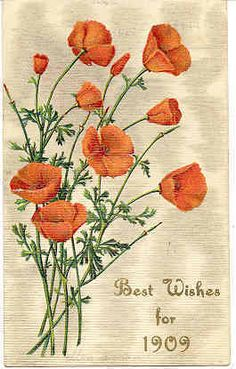 """"""" Best Wishes For 1909 """" Vintage Post Card. Produced in Germany with and embossed surface, DB-USD-PM and in Excellent condition. Karodens Vintage Post Cards."""