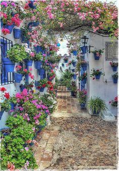 Particolare....(Spagna)