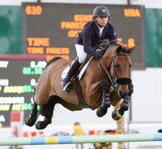 Bay Horse English Show Jumping Jump                                                                                                                                                      More
