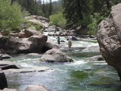 Rivers Fly Fishing And Trout On Pinterest