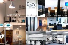 Esco Ventures Labs has been established! Esco Ventures Labs creates an environment and stepping stone for early-stage start -up companies in the Singaporean life science industry.