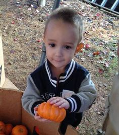 My handsome grandson enjoying a trip to the pumpkin patch with his mom and dad.