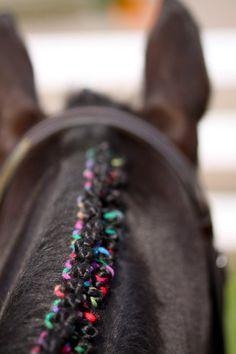 Rainbow horse braids