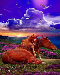 Beautiful mom and baby horse Most Beautiful Horses, Pretty Horses, Beautiful Creatures, Animals Beautiful, Animals And Pets, Cute Animals, Horse Posters, Types Of Horses, Baby Horses