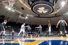 Notre Dame vs. Stony Brook - 12/8/15 College Basketball Pick, Odds, and Prediction
