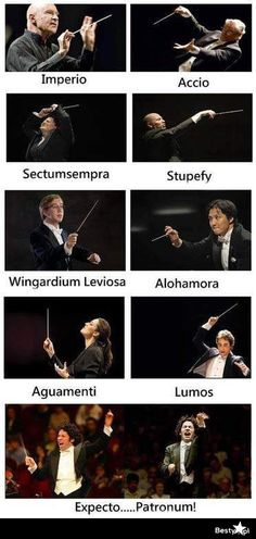 Potter and the chamber of music. If Music is magical then you'll understand why these guys look a LOT like conductors.Harry Potter and the chamber of music. If Music is magical then you'll understand why these guys look a LOT like conductors. Band Nerd, Harry Potter Jokes, Harry Potter Fandom, Harry Potter Musical, All Harry Potter Spells, Harry Potter Classes, Harry Potter Hogwarts, Fans D'harry Potter, Potter Facts