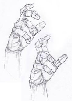 AnatoRef — Hand Studies