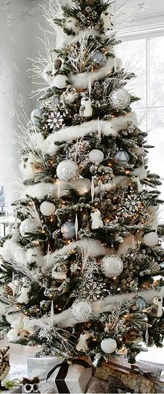 13 Best Christmas Tree Sale Images In 2015 Christmas Tree Sale