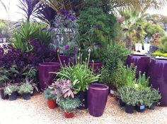 Gardencenter Ideas