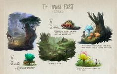 TCK - Thanakti Forest concepts  ©Thomas Brissot 2013