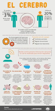 Learning Psychology, Educational Psychology, Medicine Notes, Medicine Student, Trauma, Brain Gym, Medical Facts, Bullet Journal School, Brain Health