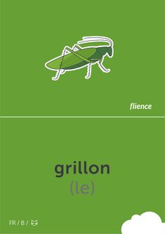 Grillon #flience #animal #insects #english #education #flashcard #language