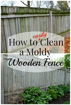 Tips on cleaning a wood fence that is moldy using water and liquid chlorine. No scrubbing or special equipment needed to make a wood fence look like new. Deep Cleaning Tips, House Cleaning Tips, Cleaning Solutions, Spring Cleaning, Cleaning Hacks, Cleaning Products, Cleaning Checklist, Hardwood Floor Cleaner, Homemade Toilet Cleaner