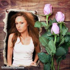 fotomontajes de rosas