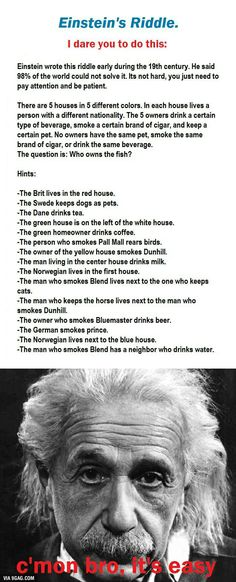 Einstein's Riddle- TOOK ME ABOUT ONE AND A HALF HOURS BUT ALAS I AM A GENIUS