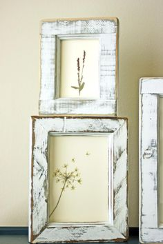 DIY framed flowers... I really need to get to my backyard and start collecting..:)
