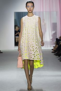 I adore this frock...Christian Dior Ready to Wear Spring - Summer 2013.