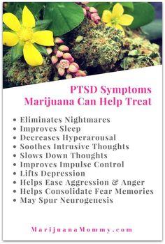 Science Explains How Marijuana Treats PTSD · Marijuana Mommy