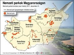 nemzeti parkok - Google keresés Environmental Studies, Nature Study, 4 Kids, Homeschool, Science, Education, Learning, Graduation, Google