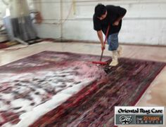 Proficient Rugs Cleaning Coconut Creek