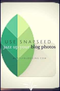 #Photography Tricks with Snapseed Filters Click to see your choices. MostlyBlogging.com